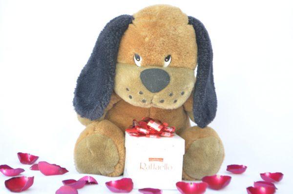 chocolate-regalo-oso